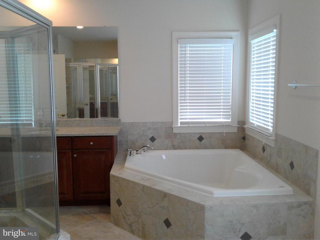 Bath (Master) Tube anyone? - 18275 GLEN OAK WAY, LEESBURG
