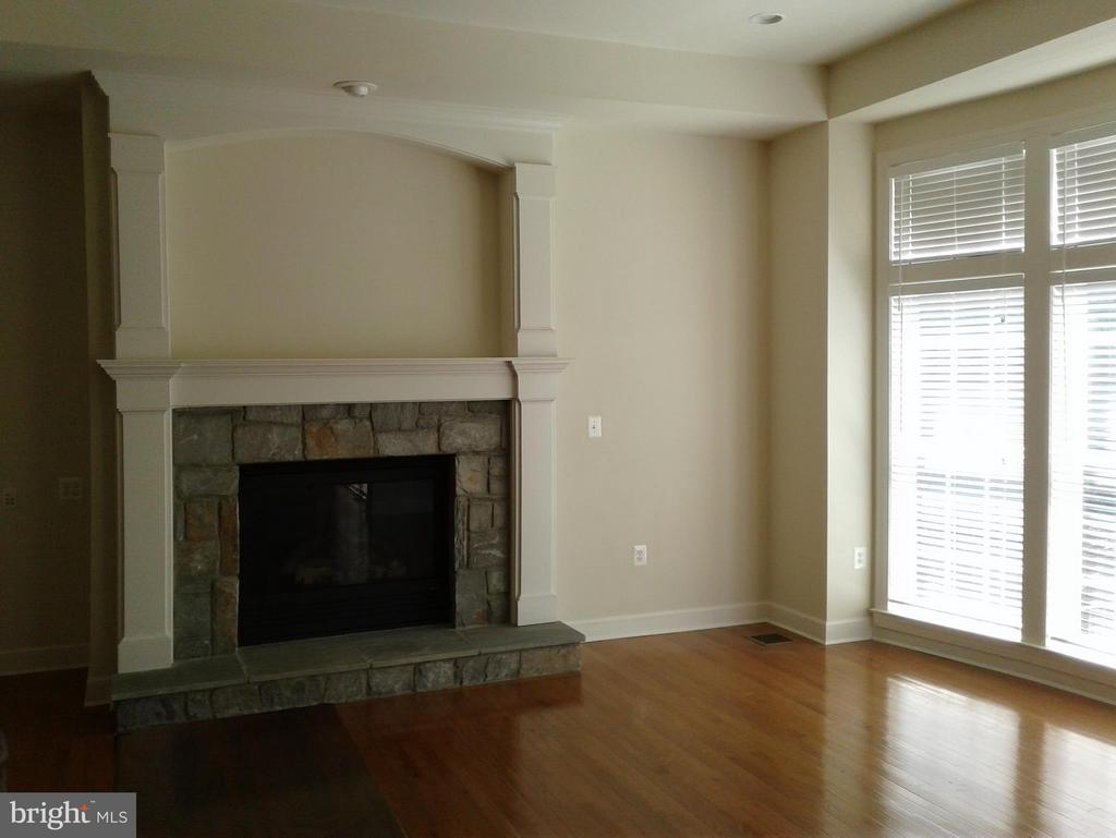 Family Room Stone~Gas Fireplace - 18275 GLEN OAK WAY, LEESBURG