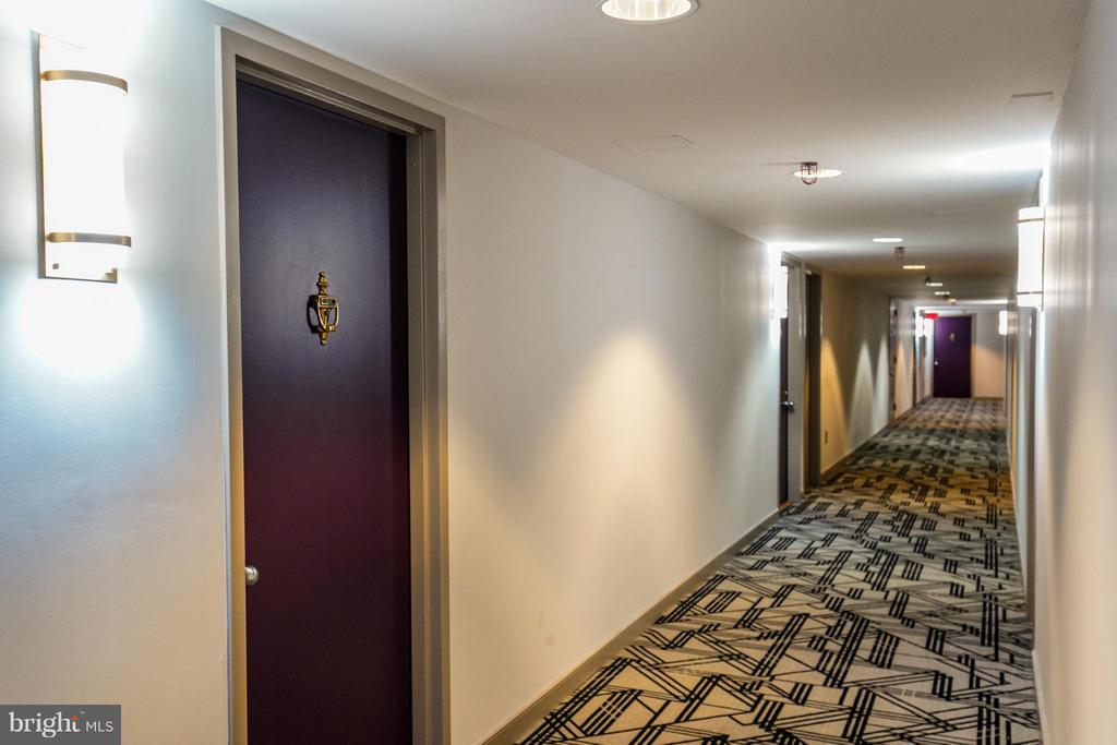 Newly Renovated Hallway - 1230 23RD ST NW #503, WASHINGTON