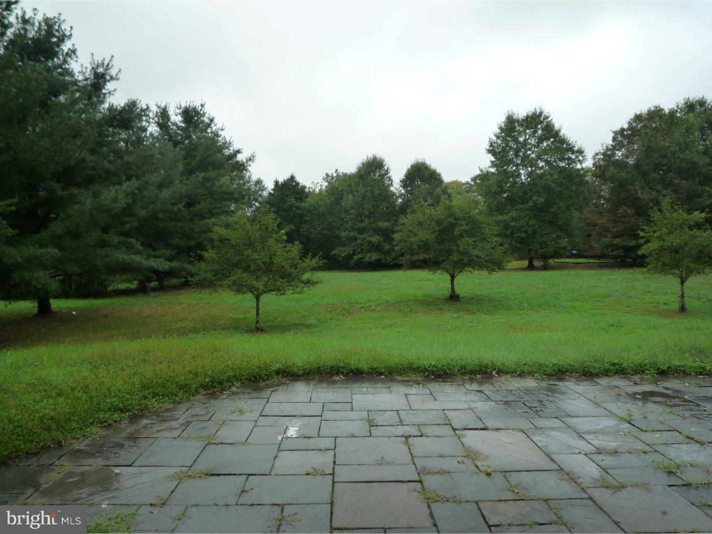 Additional photo for property listing at 44 PLANTERS ROW  Skillman, New Jersey 08558 United States