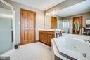 Master suite/separate shower/ Jacuzzi - 7411 SNOW HILL DR, SPOTSYLVANIA