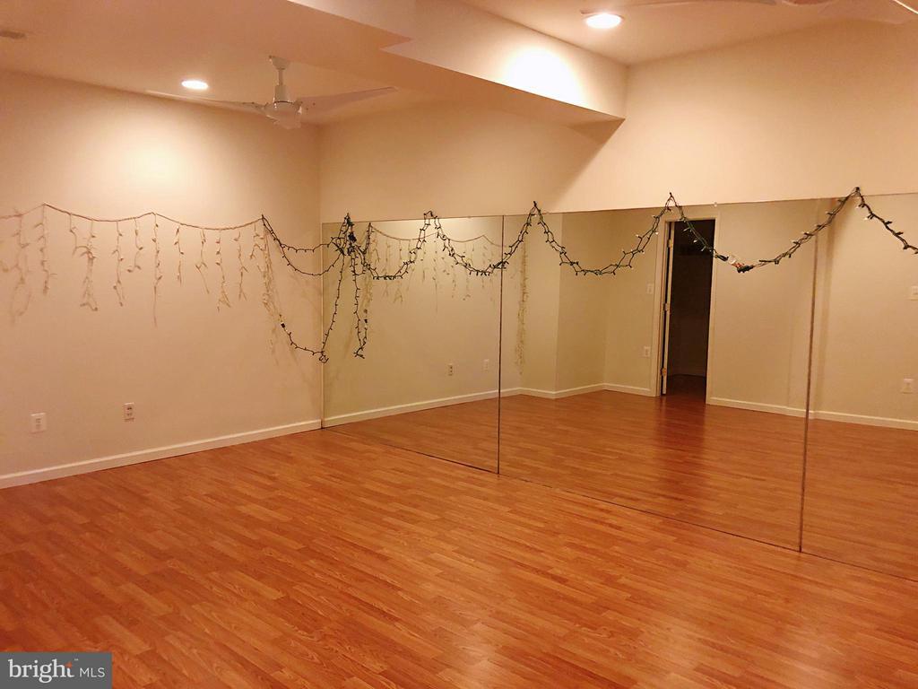 lower level dance studio - 14352 NORTHBROOK LN, GAINESVILLE