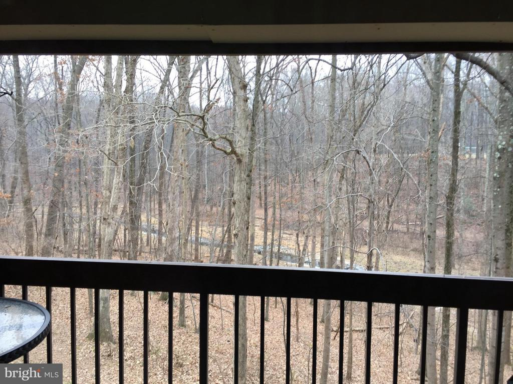 Winter View from the Balcony off the Living Room - 1664 PARKCREST CIR #300, RESTON