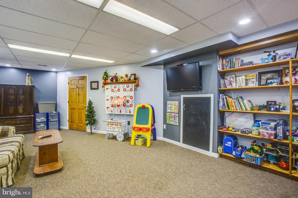 Find the Hide and seek space!! Book shelves - 7411 SNOW HILL DR, SPOTSYLVANIA