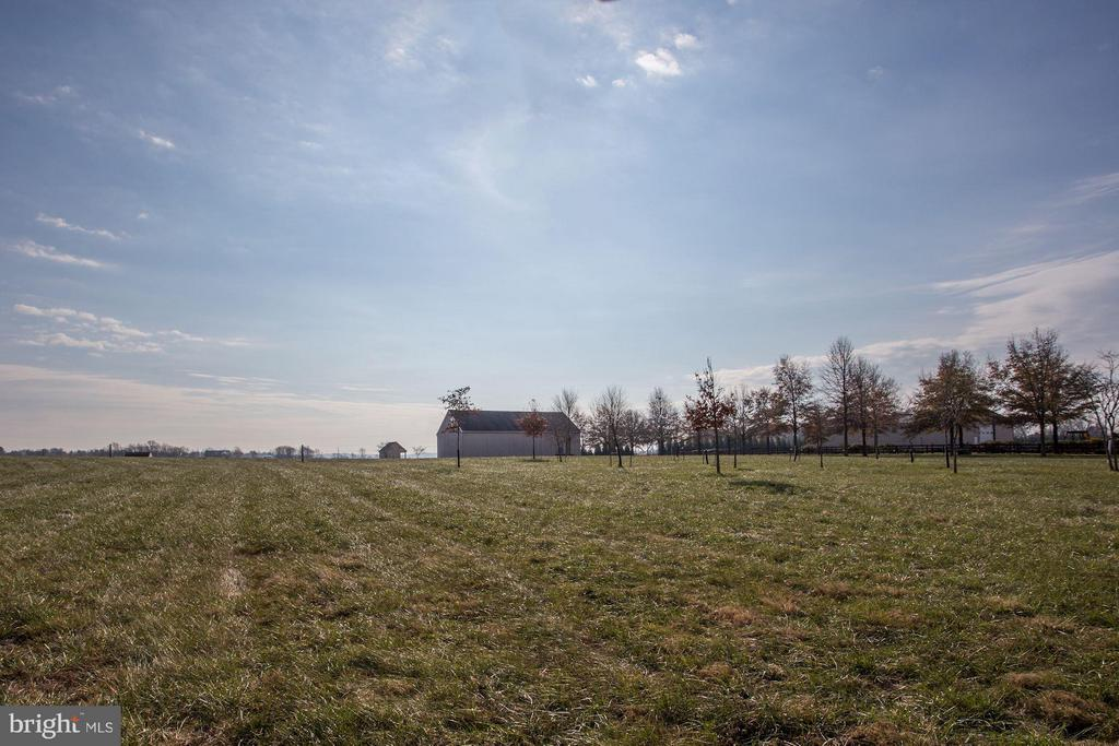 12 Acres, Barn, 5 Bedroom Perc, AR1 Zoned, Views - 42692 LUCKETTS RD, LEESBURG