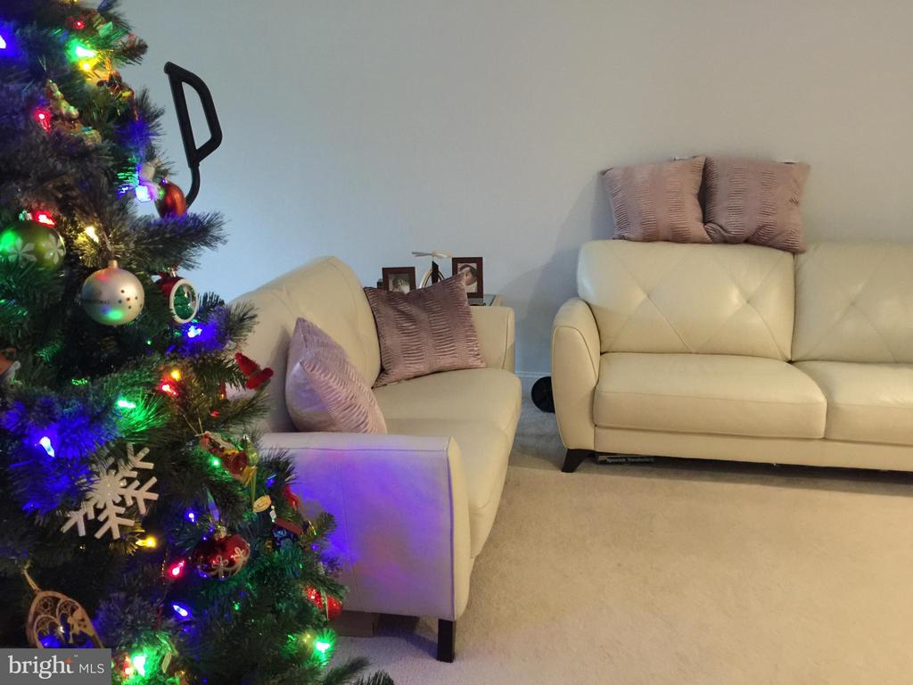 This Living Room is Spacious! - 1664 PARKCREST CIR #300, RESTON
