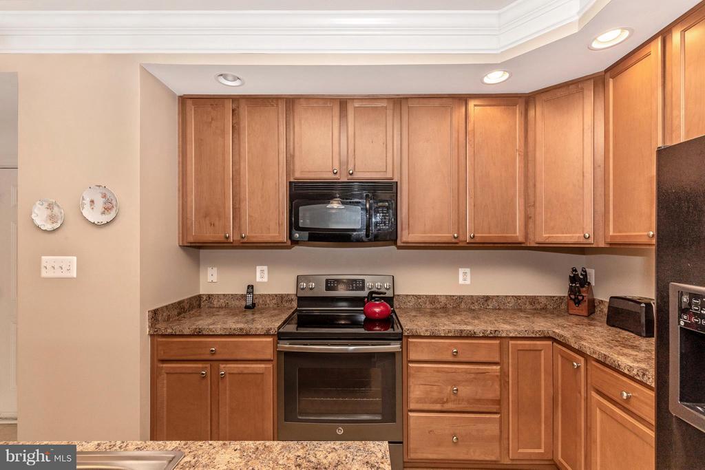 Kitchen and appliances - 3640 HOLBORN PL, FREDERICK