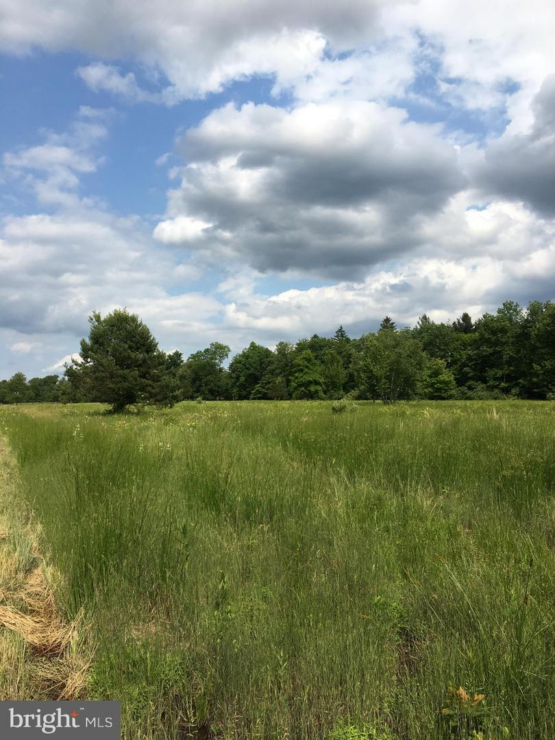 Land for Sale at CHERRY VALLEY Road Princeton, New Jersey 08540 United StatesMunicipality: Hopewell Township