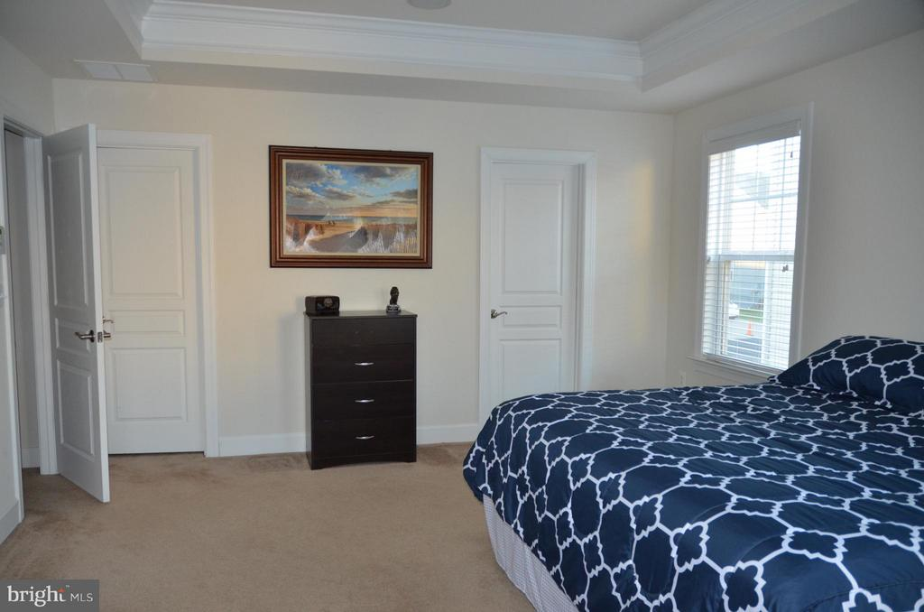 MASTER WITH TWO ENORMOUS WALK IN CLOSETS - 15106 ADDISON LN, WOODBRIDGE
