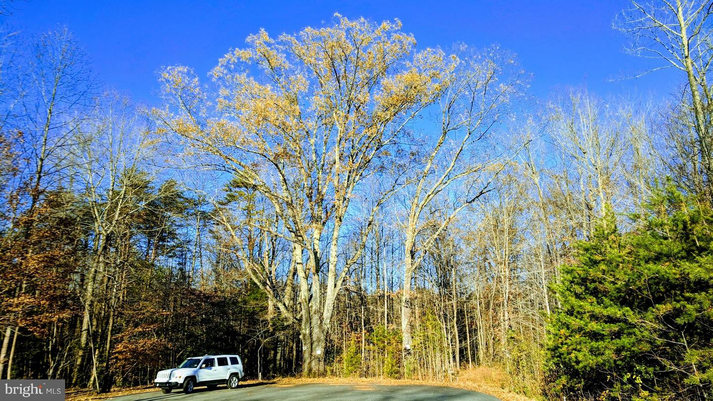 Land for Sale at 0 Brookesmill Stafford, Virginia 22554 United States