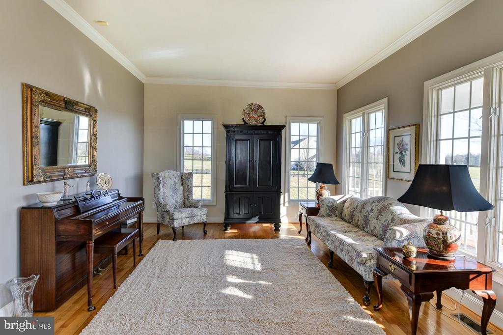 Sun filled living room with French doors - 38814 BOCA CT, WATERFORD