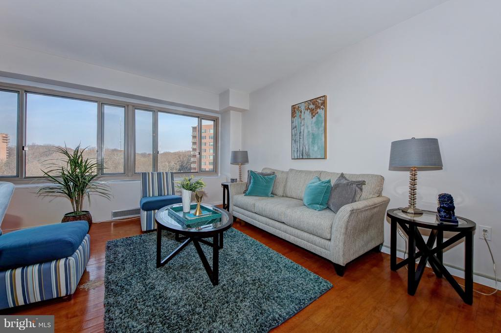 Not too Big, Not too Small - 4101 CATHEDRAL AVE NW #1205, WASHINGTON