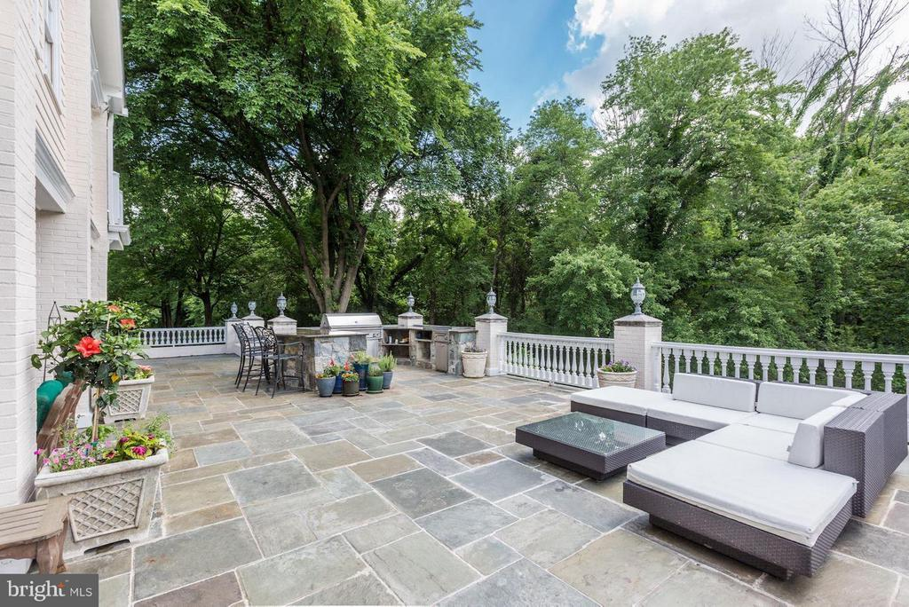 Expansive Terrace w/ Outdoor Grill Station - 1001 MURPHY DR, GREAT FALLS