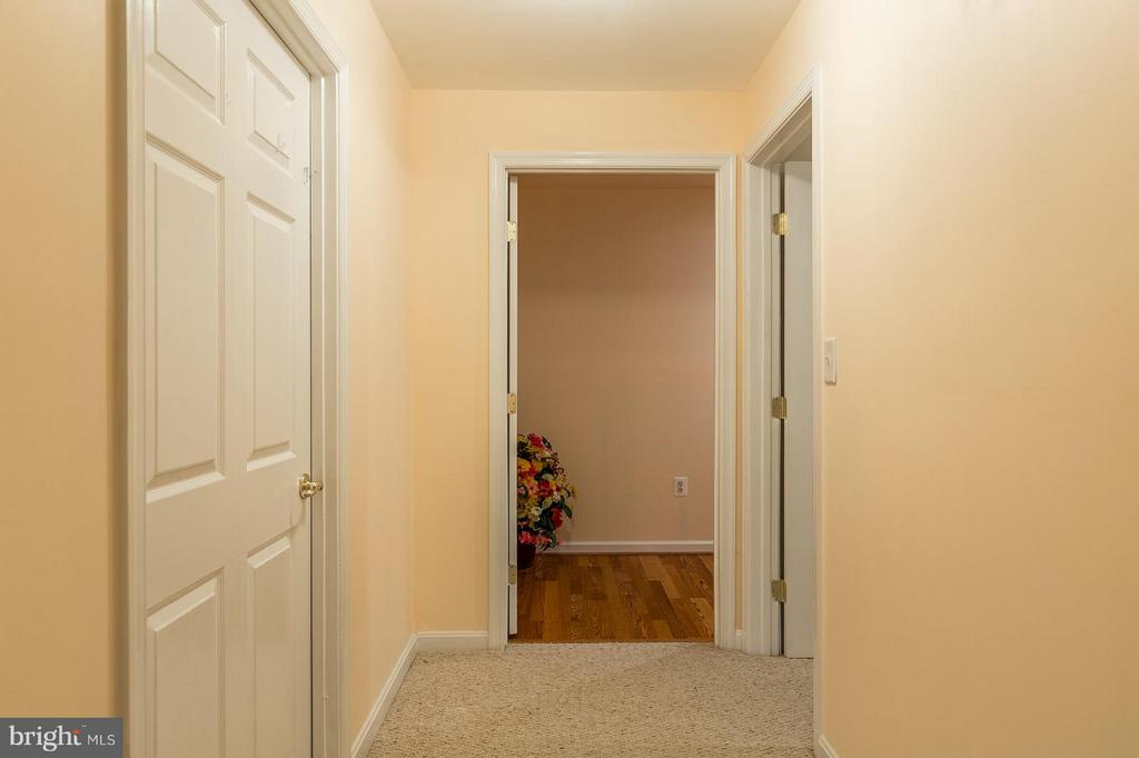 Lower Level Hallway - 17467 FOUR SEASONS DR, DUMFRIES