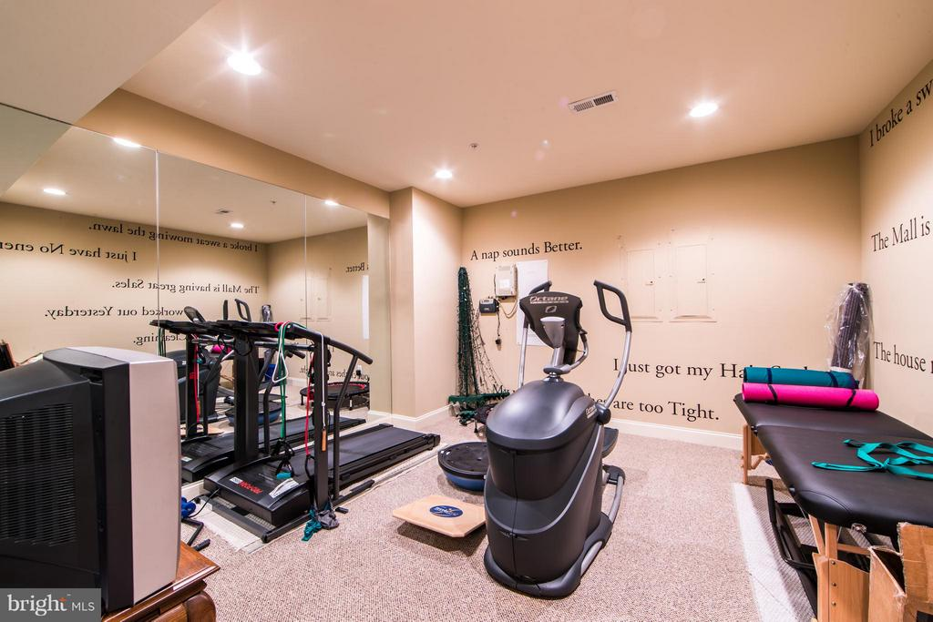 Exercise Room - 21813 AINSLEY CT, BROADLANDS