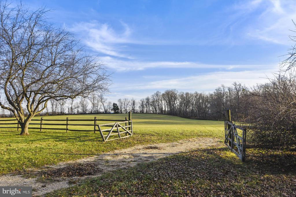 Side Yard - 39881 SNICKERSVILLE TPKE, MIDDLEBURG