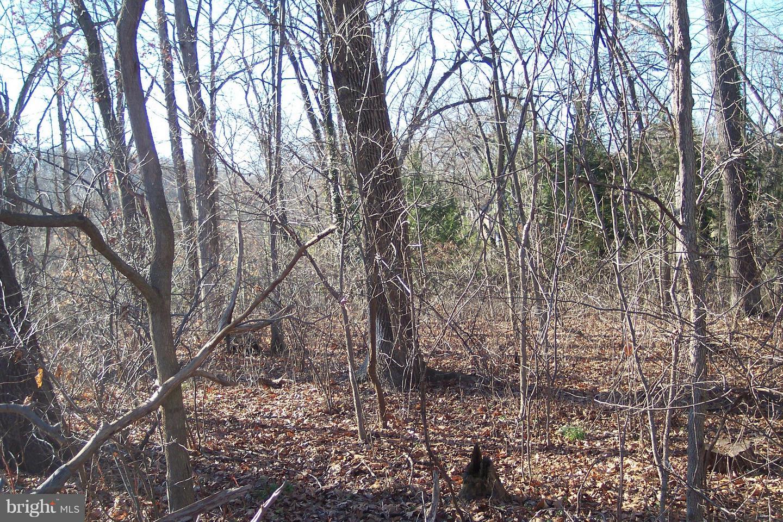 أراضي للـ Sale في Spring Mount, Pennsylvania 19473 United States