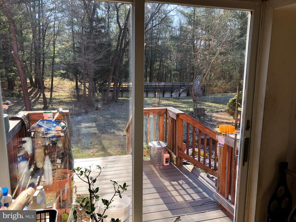 From Sun-Room Lap-pool Rear Right - 1919 CASTLEMAN RD, BERRYVILLE