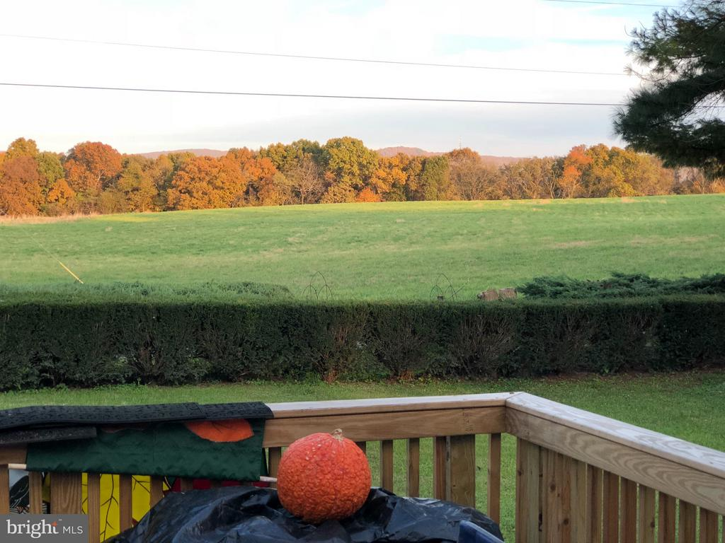 Neighboring Monastery Farm View  From Porch - 1919 CASTLEMAN RD, BERRYVILLE
