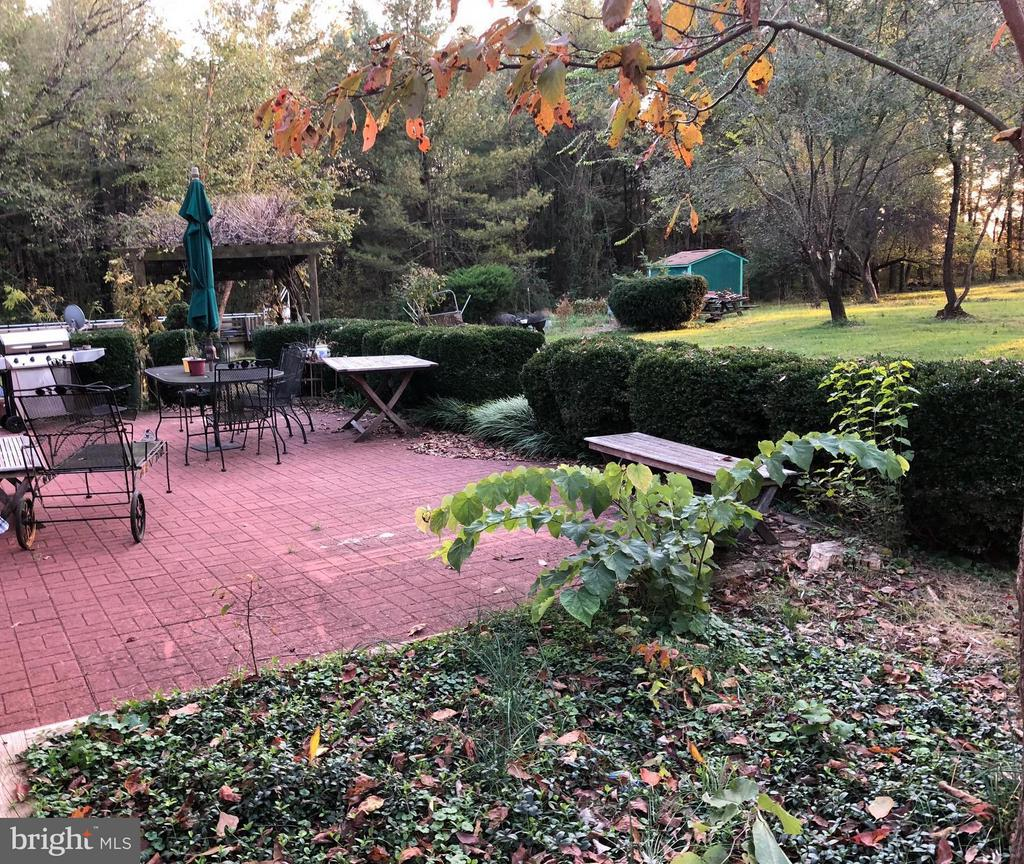 Patio & Flower Bed Lovely Tall Shade Trees - 1919 CASTLEMAN RD, BERRYVILLE