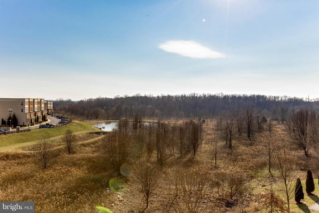 Oh the views, so tranquil - 1456 TRAFALGAR LN, FREDERICK