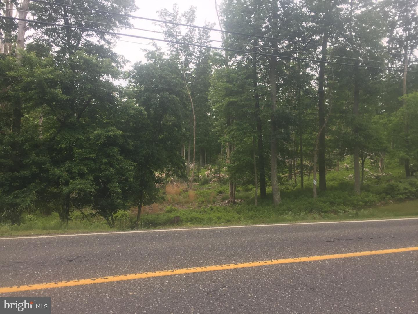 Land for Sale at 98 HAWKIN Road New Egypt, New Jersey 08533 United StatesMunicipality: Plumsted
