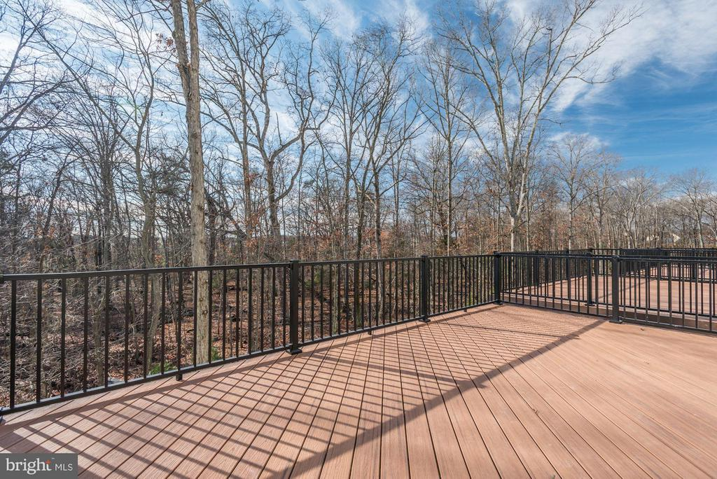 Soho Deck Views - 42502 MILDRED LANDING SQ, ASHBURN