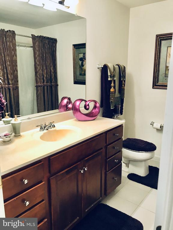 Full hall bathroom also includes a linen closet - 4157 AGENCY LOOP, TRIANGLE