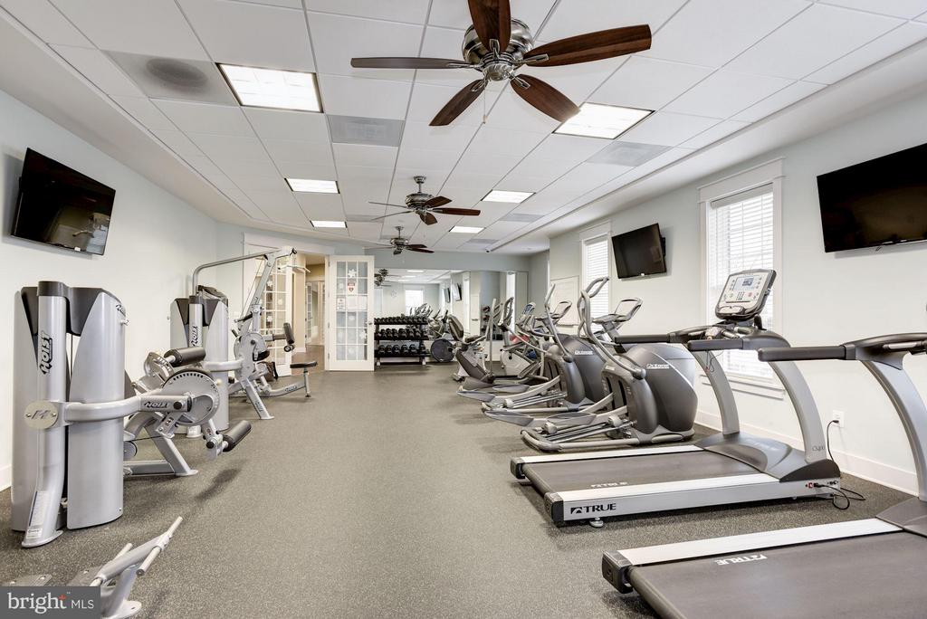 Gym- exercise equipment and t.v. - 44589 YORK CREST TER #304, ASHBURN