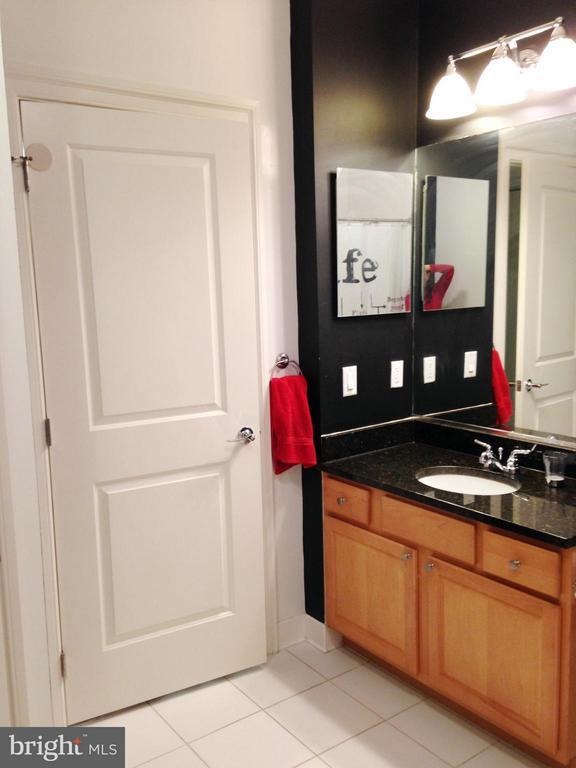 Bathroom - 38 MARYLAND AVE #214, ROCKVILLE