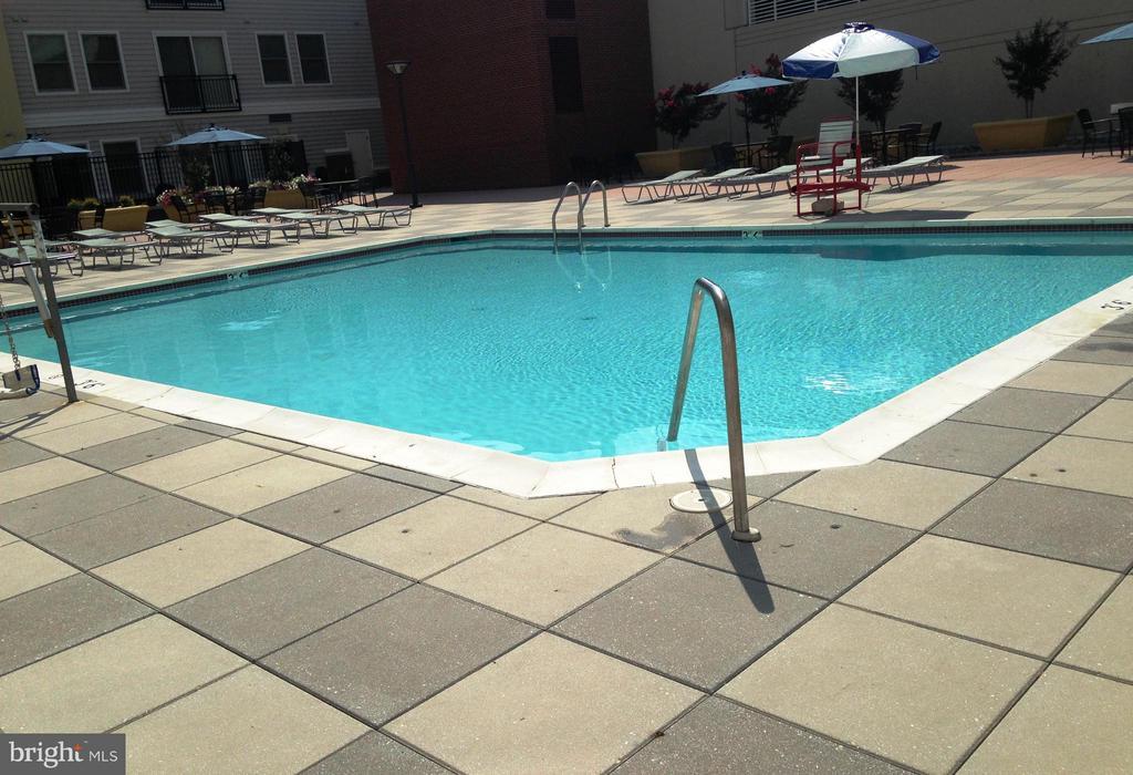 Community Pool - 38 MARYLAND AVE #214, ROCKVILLE
