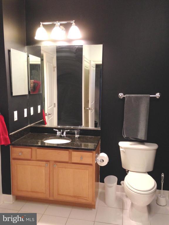 Large Bathroom - 38 MARYLAND AVE #214, ROCKVILLE