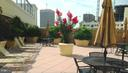 Rooftop Terrace - 38 MARYLAND AVE #214, ROCKVILLE