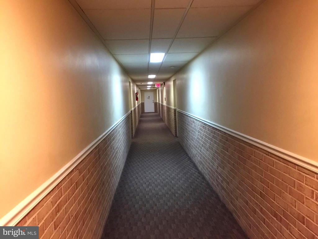 4th Floor Hallway - 5111 8TH RD S #401, ARLINGTON