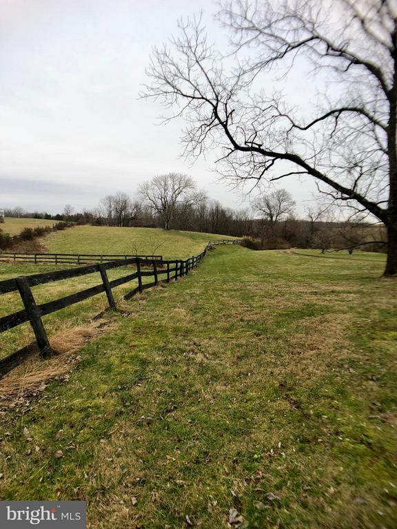 Lot line is Tree line not Fence line - 18483 SILCOTT SPRINGS RD, PURCELLVILLE