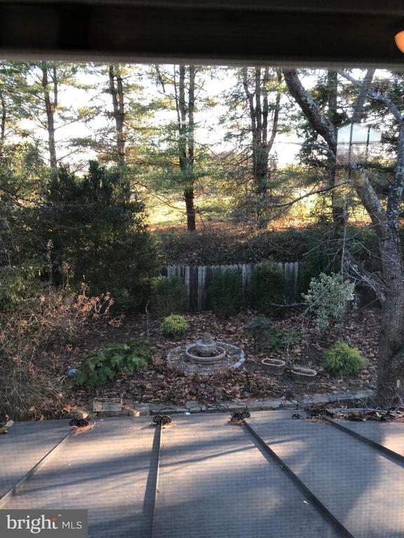 View of Backyard - 18483 SILCOTT SPRINGS RD, PURCELLVILLE