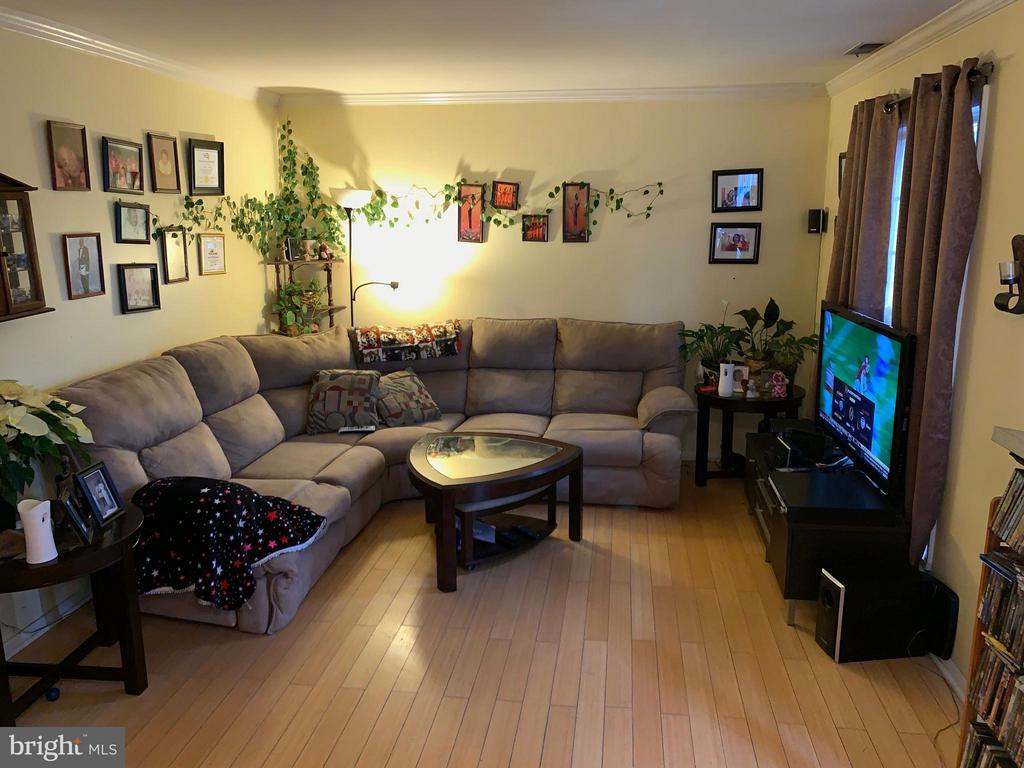 Main level family room view 1 - 913 ANVIL RD, FREDERICKSBURG