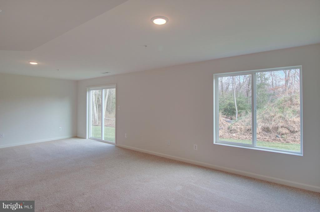 Finished Walk-out Basement - 1406 CANOPY LN, ODENTON