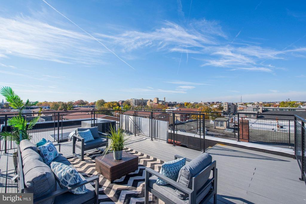 PRIVATE roof deck with views for days! - 549 PARK RD NW #3, WASHINGTON