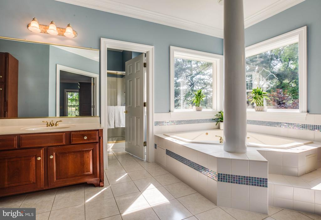Look at this bathroom! - 417 FOREST LANE RD, FREDERICKSBURG