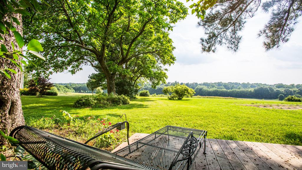 Gorgeous pastoral views - 417 FOREST LANE RD, FREDERICKSBURG