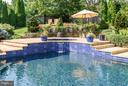 Waterfall, Separate Spa, Color Changing Lighting - 35190 DORNOCH CT, ROUND HILL
