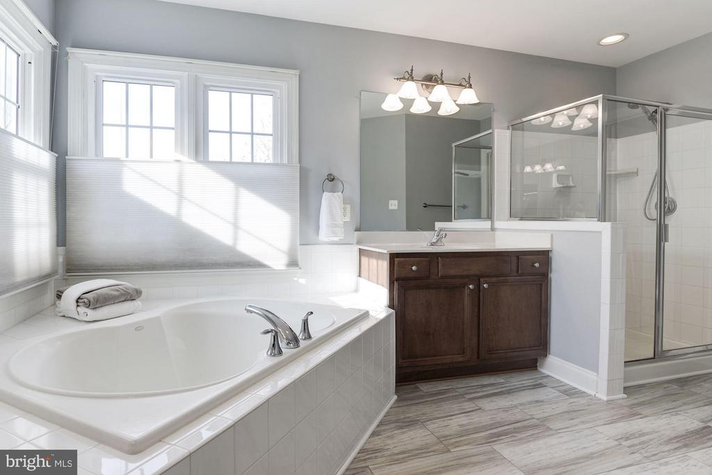 Large Master Bath - 47479 SISLER CT, STERLING