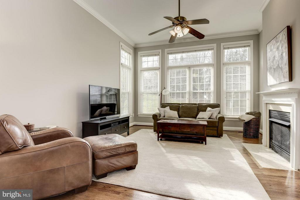 Bright Family Room - 47479 SISLER CT, STERLING