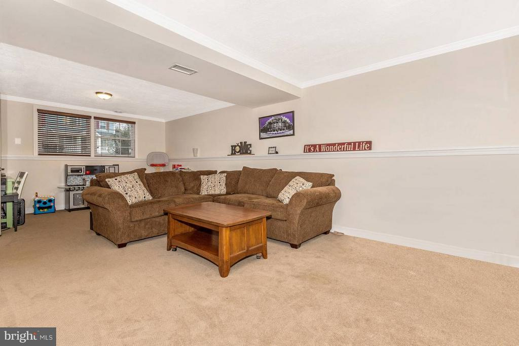 Lower Level Family Room - 6402 DEVONSHIRE LN, FREDERICK