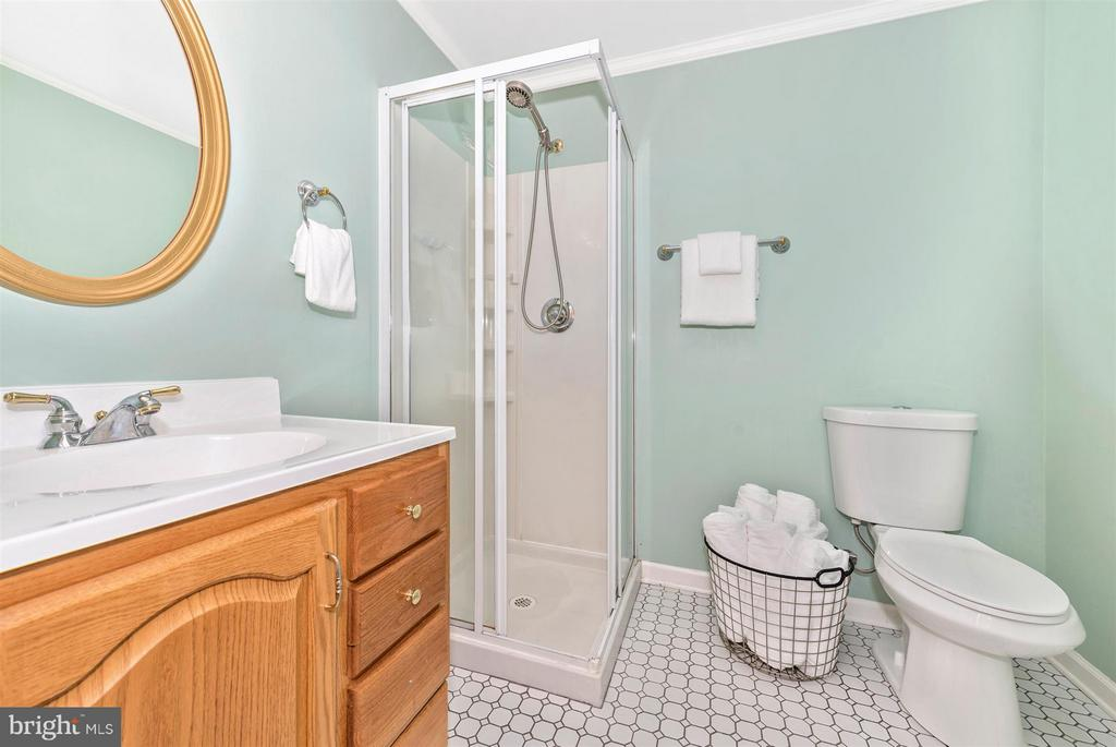 Full bath on lower level with stand up shower. - 10538 CHURCH HILL RD, MYERSVILLE