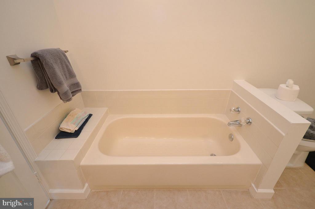 Master Bedroom Soaking Tub - 44114 GALA CIR, ASHBURN