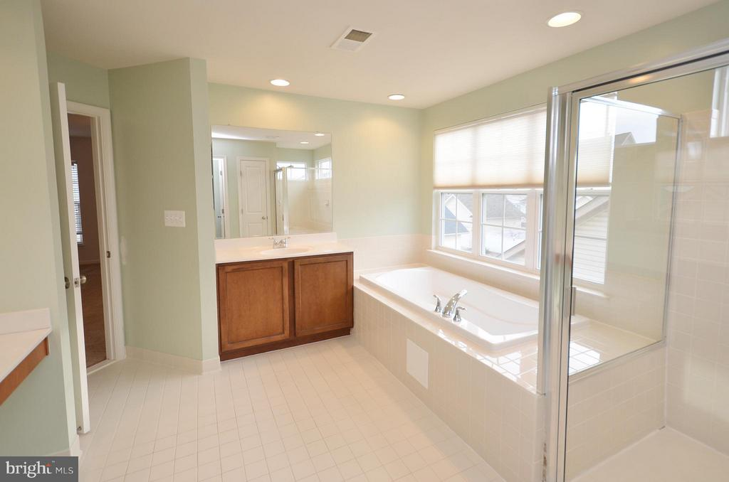 Master Bathroom with Separate Shower - 23386 HIGBEE LN, BRAMBLETON