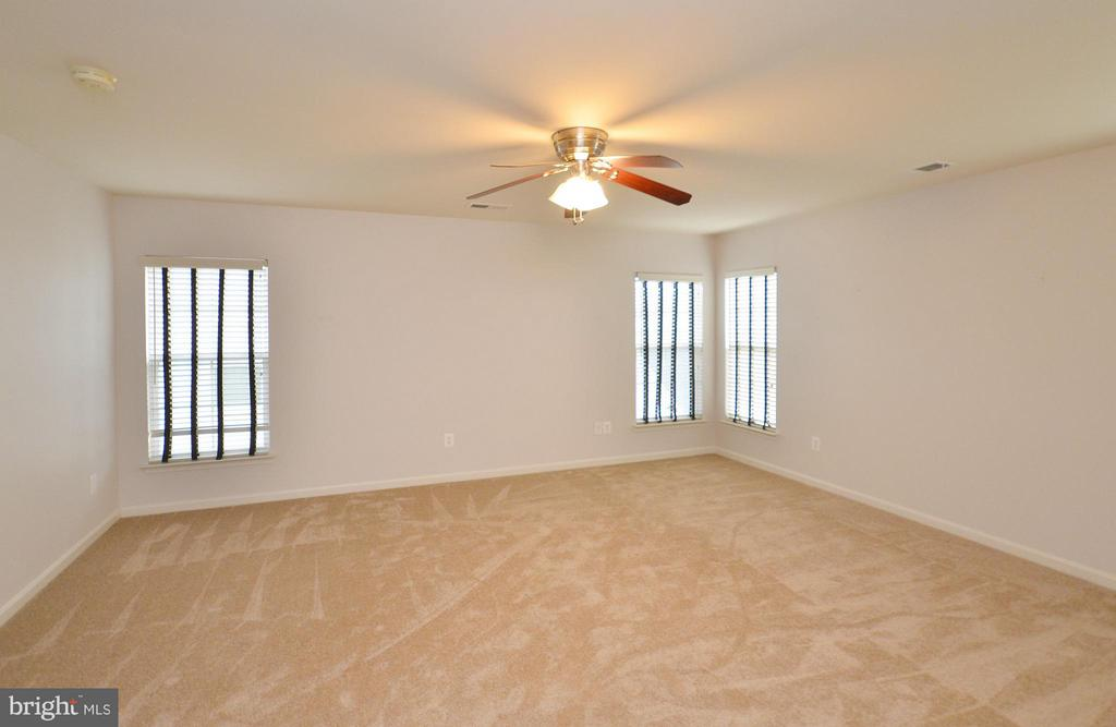 Spacious Master Bedroom - 23386 HIGBEE LN, BRAMBLETON