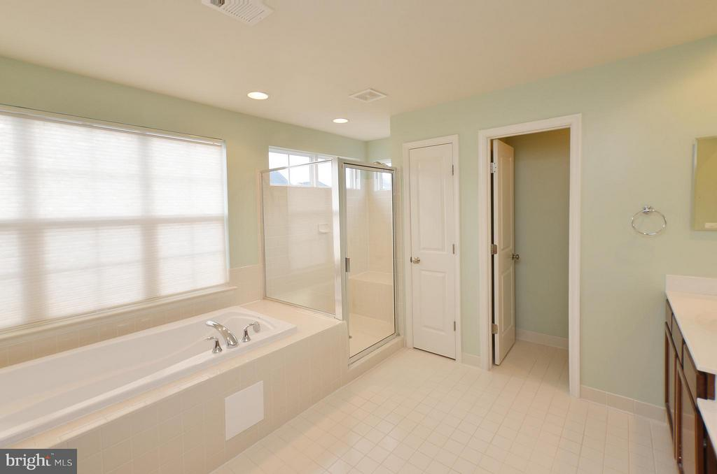 Master Bathroom Soaking Tub - 23386 HIGBEE LN, BRAMBLETON